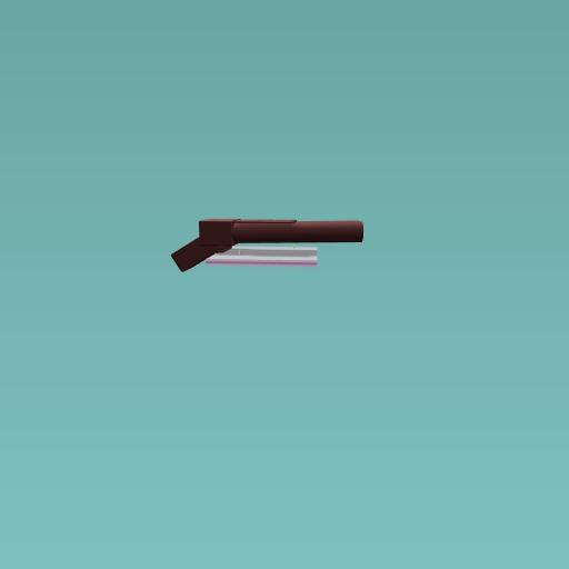 Double barrel shot gun