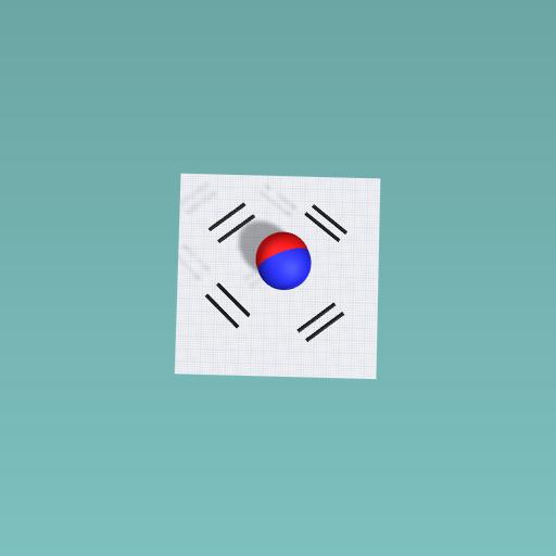 South korean flag!