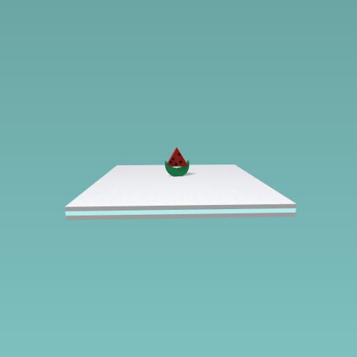 My useless watermelon