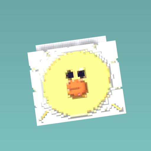 Duck sun