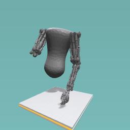 Tors robotic