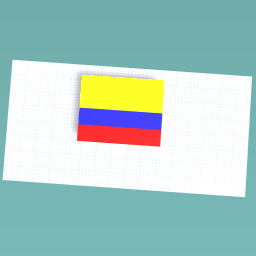 A COLOMBIAN flag