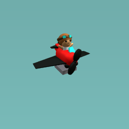Peter the pilot