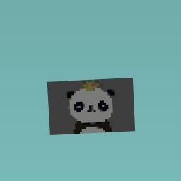 #panda queen