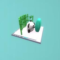 wach tv litile panda