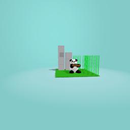 Panda with sushi!