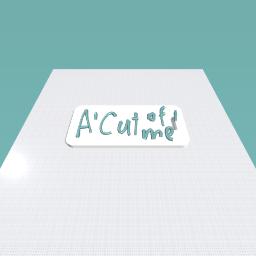 A cutting board!