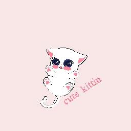 cute kittin
