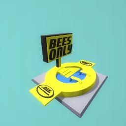 Bee drinking pool