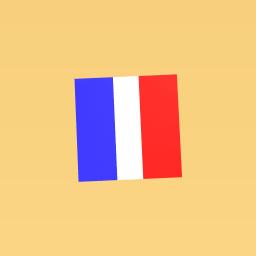 Flag of france/paris!
