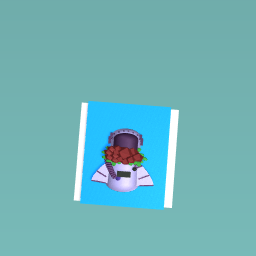 Astronaut Rose Helmet<3