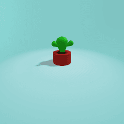 The cactuse