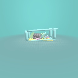 Axolotl tank :)