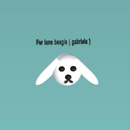 Luna's beagle