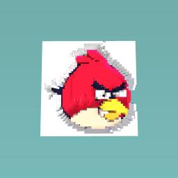 ANGRY BIRD !!