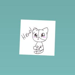 Kitty cat :3