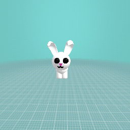 bunny for sale(free)
