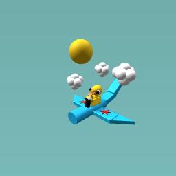 Marmaduckes plane