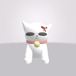 A cat for noah