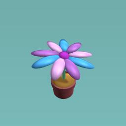 Like if you like flowers