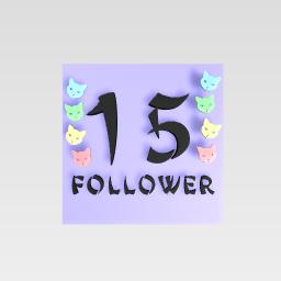 15 follower