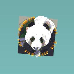 Dis is a weird panda
