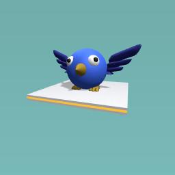 bird dude