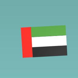 U.A.E  flag