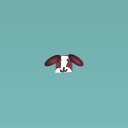 Luna The Beagle