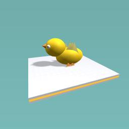 A cute littel bird
