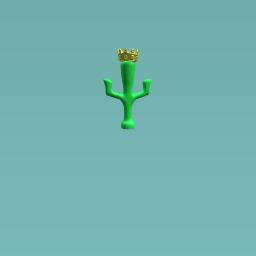 King of Cacti